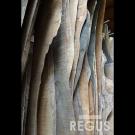 Wood_slab_14