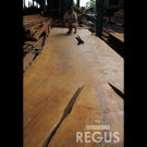 Wood_slab_17